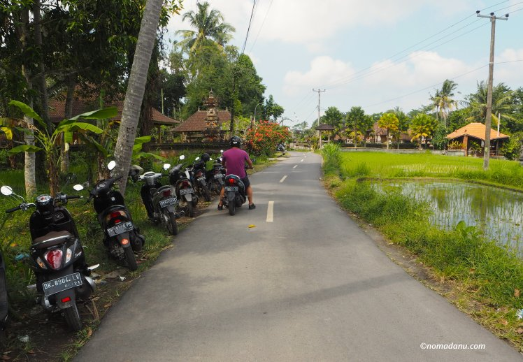 driving around Ubud