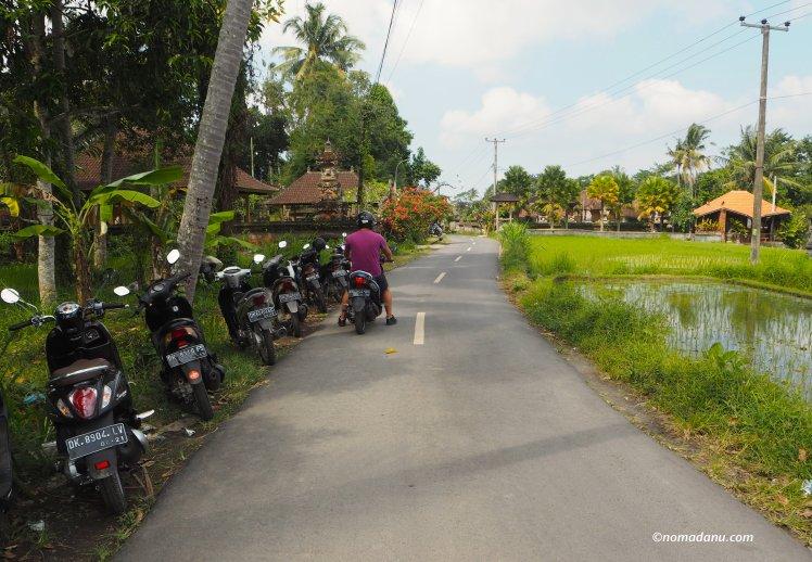 driving around Ubud